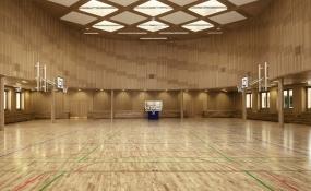 Junckers-sports-floor-Falkonergaardensgymnasium1